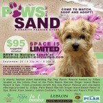 Social: Paws In The Sand To Benefit Big Dog Ranch Rescue