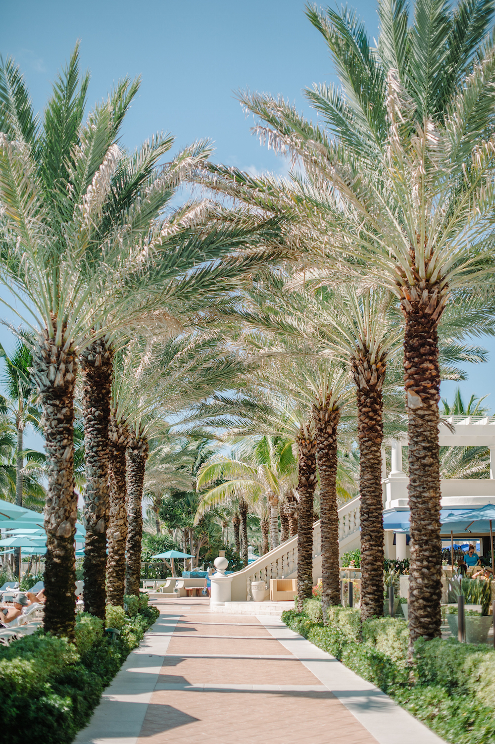 vacation_ocean_blue_the_breakers_palm_beach