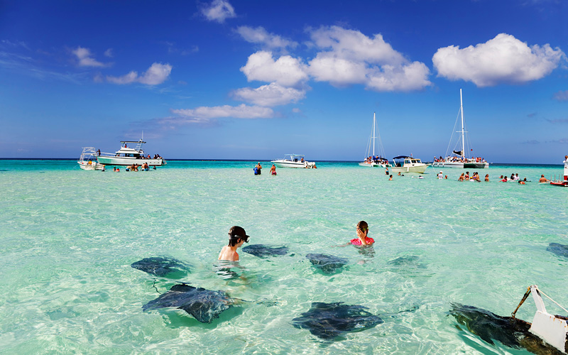 celebrity-cruises-stingrays-at-the-sandbar-off-grand-cayman-gallery