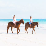 Horseback Riding with Island Company on Harbour Island
