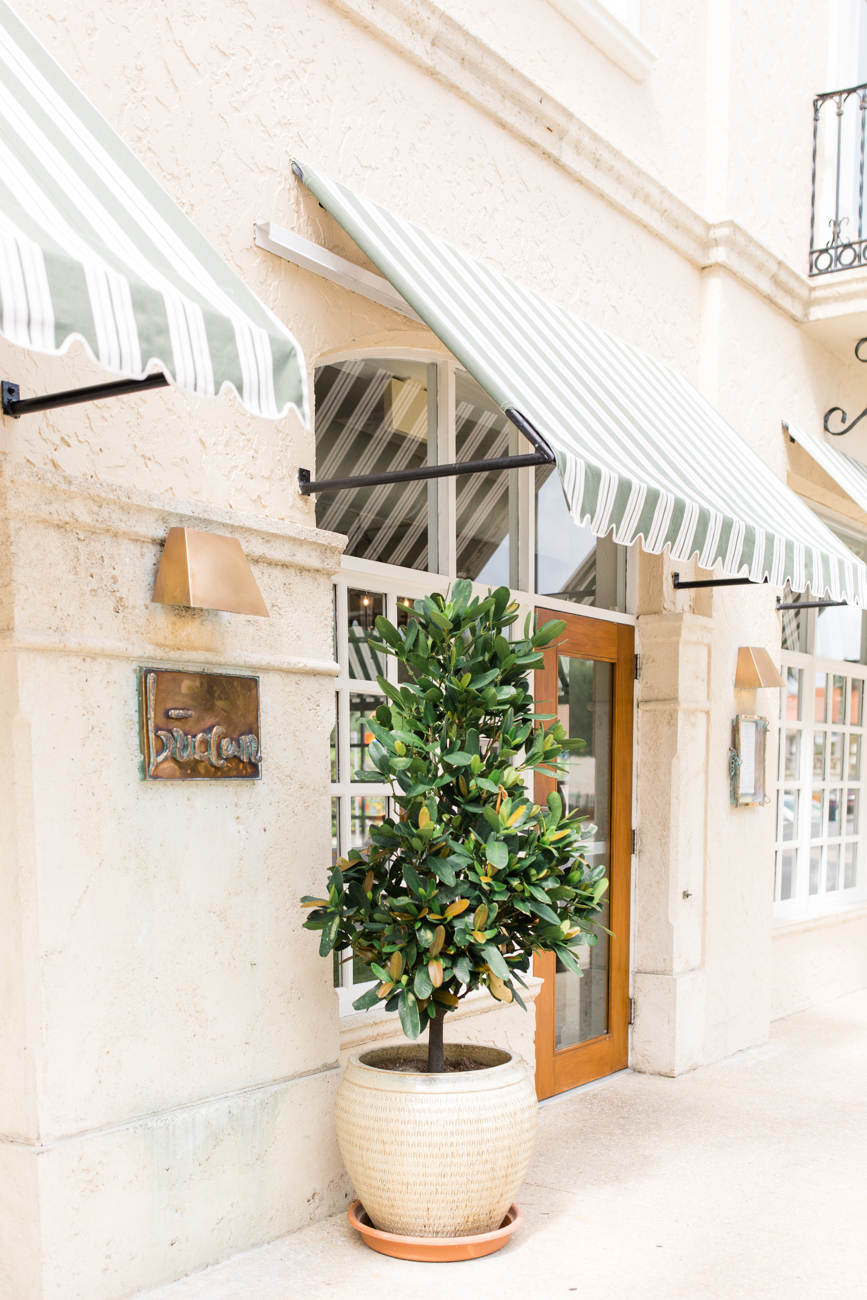 Guide to Palm Beach by Palm Beach Lately